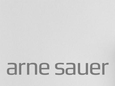 Arne Sauer